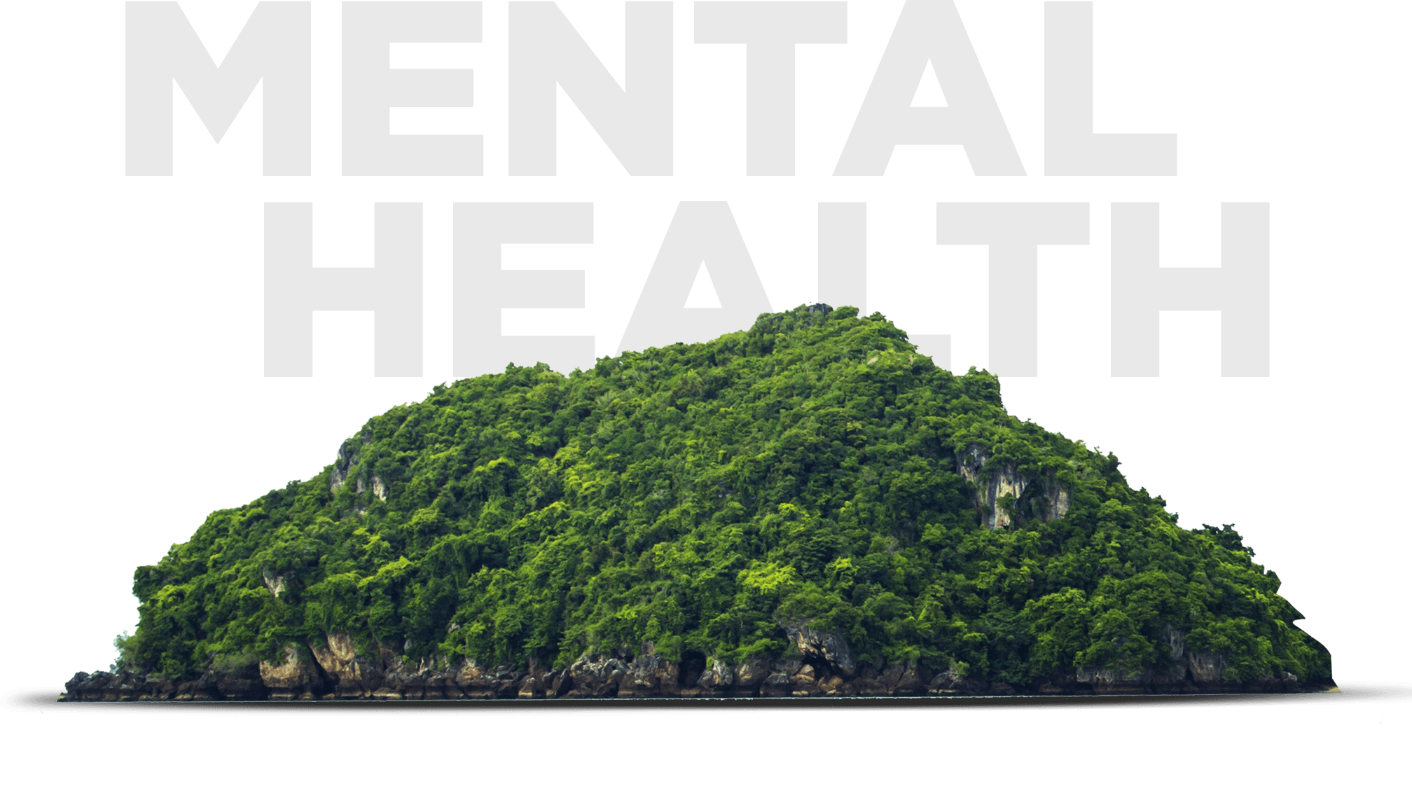 Mental health lebanon